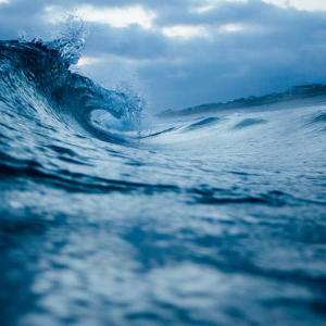 Tsunami Conditions for Bitcoin: Preparing to Ride the Wave
